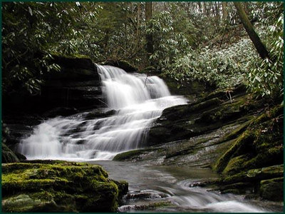 Rhododendron Creek -one of thirteen cascades along it Hiked with Reggie GSMNP TN