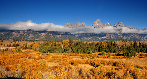 Teton yellow and blue GYE #114