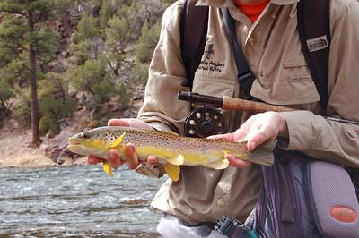 Fishy_2007-03-23_3