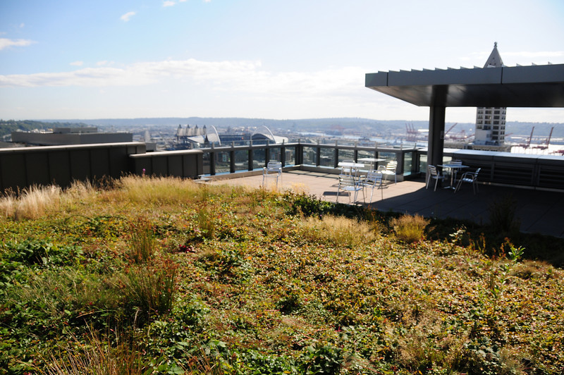 """Green roof at Seattle Municipal Court, also known as the Justice Center.  More information is here:   <a href=""""http://www.greenroofs.com/projects/pview.php?id=311"""">http://www.greenroofs.com/projects/pview.php?id=311</a>"""