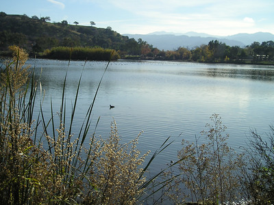 Lake Almaden is lovely today.
