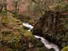 Aira Force<br /> Shot with Olympus E500 and the Sigma 18-50mm lens
