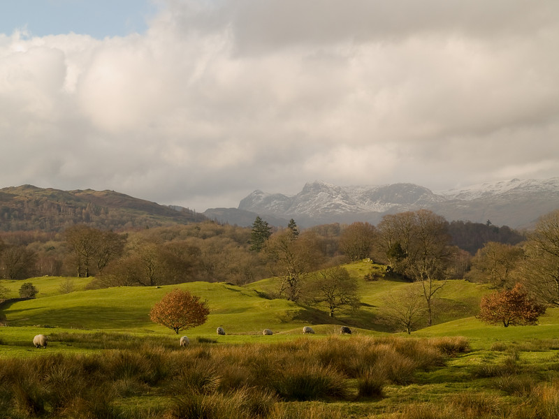 Langdale Pikes from Wrays Castle in Cumbria<br /> Shot with Olympus E500 and the Sigma 18-50mm lens