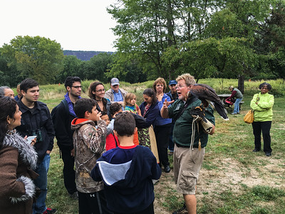 HRAS and Wave Hill Raptor Day 2016