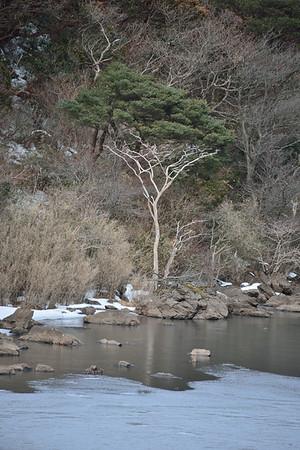 Hakone Winter 2016