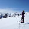 Skitur Bjørndalskammen...