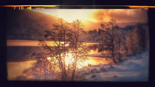 Vinterdraum