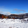 Den fyrste snøen, mens laua framleis er på trea... 2008