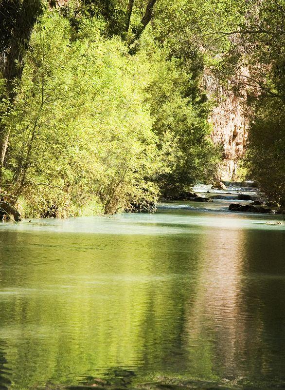 Downstream_Camp1 copy