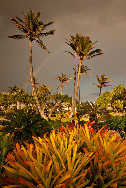 Rainbow, The Point at Poipu<br /> Kaua'i