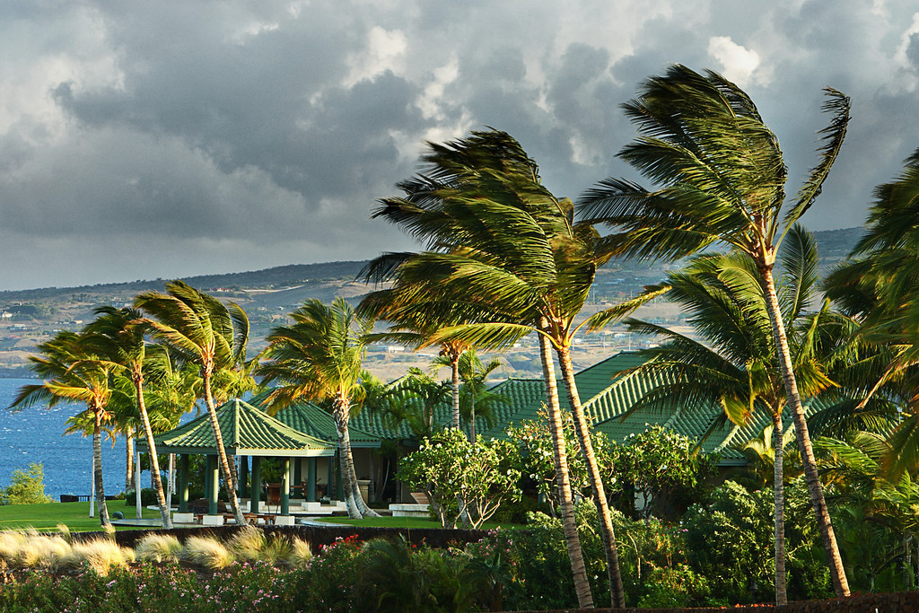 """Windy.  The Big Island, Hawaii.  <br /> See another version in the """"Artistic Renderings' gallery."""
