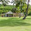 Allerton_Garden_Estate_Kauai_9-28-14_IMG_0513