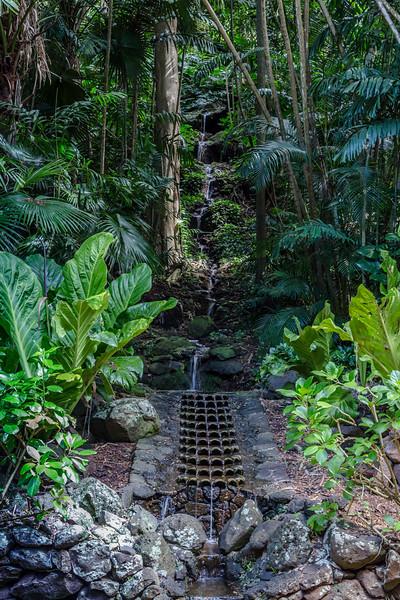 Water_feature_Allerton_Garden_Kauai_9-28-14_IMG_0461