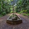 Sleeping_Pony_Allerton_Garden_Kauai_9-28-14_IMG_0465