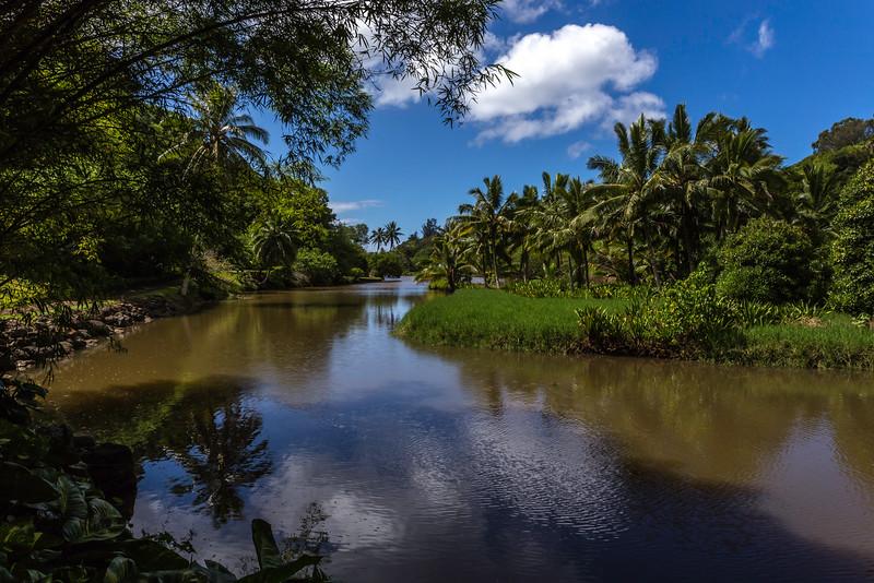 Lawai_Stream_Allerton_Garden_Kauai_9-28-14_IMG_0495