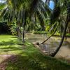 Allerton_Garden_Estate_Kauai_9-28-14_IMG_0486