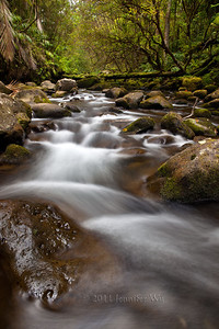 Flowing Waters Near Hilo, Big Island, Hawaii  20110422_BigIsland_097