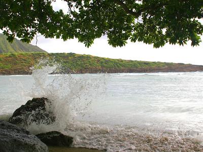 Bay waves, Oahu