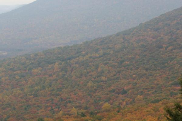 Hawk Mountain, Pa.