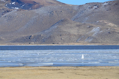 Water and Ice in Washoe Lake Nevada
