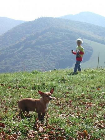Hemphill Bald/Cataloochee Ranch Hike