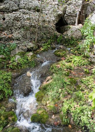 Honey Creek Cave stream emerging