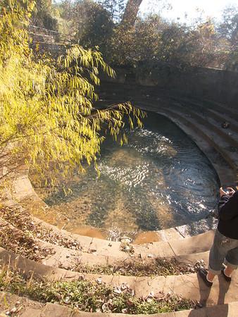 Eliza Spring, Zilker Park, Austin, Texas.