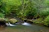 Profile Trail, Grandfather Mountain, NC