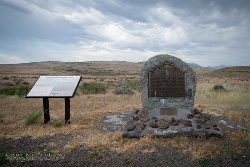 Noble Emigrant Monument, Hwy 395 California.