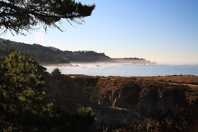 Point Lobos State Reserve Jan18th 61 of 259