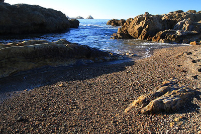 Point Lobos State Reserve Jan18th 42 of 259