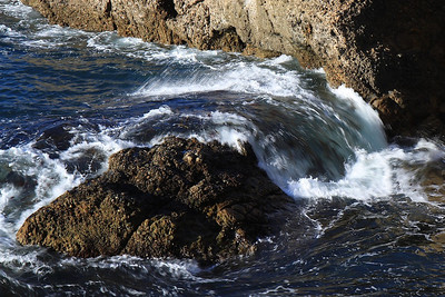 Point Lobos State Reserve Jan18th 49 of 259