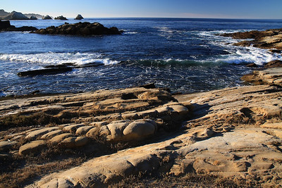 Point Lobos State Reserve Jan18th 23 of 259