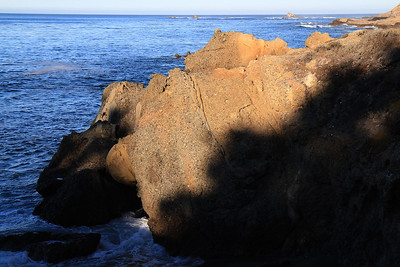 Point Lobos State Reserve Jan18th 54 of 259