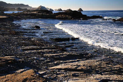 Point Lobos State Reserve Jan18th 28 of 259