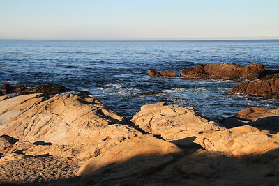 Point Lobos State Reserve Jan18th 1 of 259