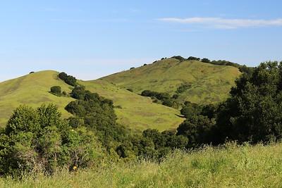 Briones hike Apr24th  026