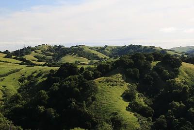 Briones hike Apr24th  030