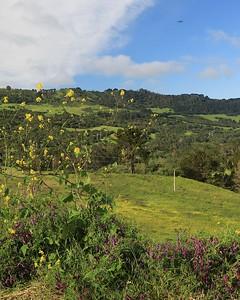 Briones hike Apr24th  008