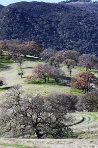 Los Vaqueros hike Dec18  047