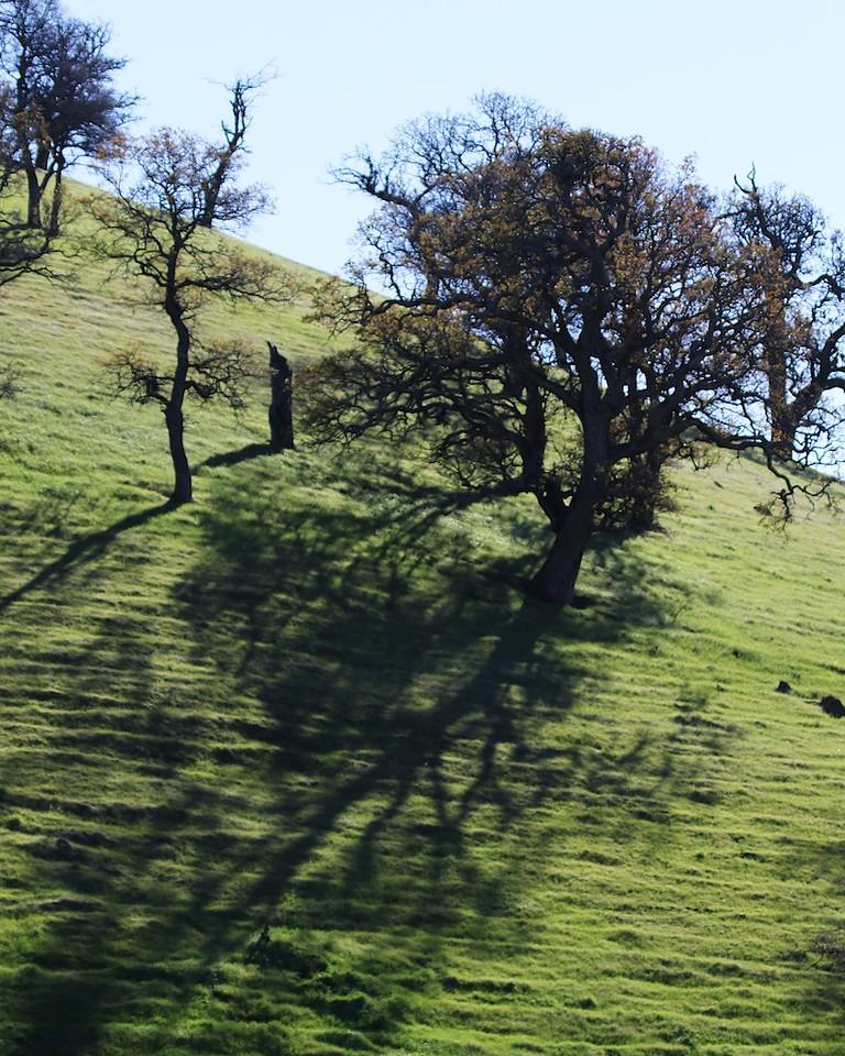 Los Vaqueros hike Dec18  052