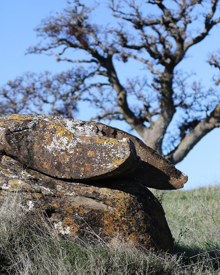 Los Vaqueros hike Dec18  037