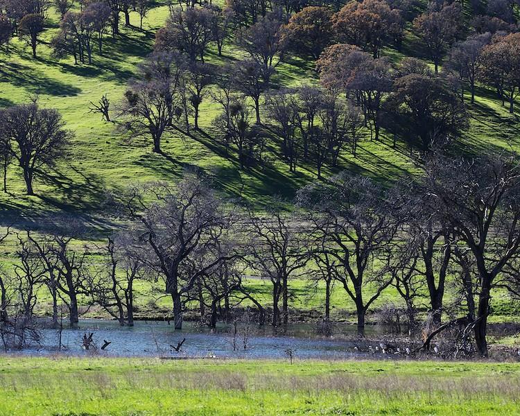 Los Vaqueros hike Dec18  098