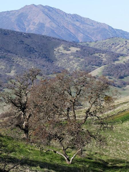 Los Vaqueros hike Dec18  028