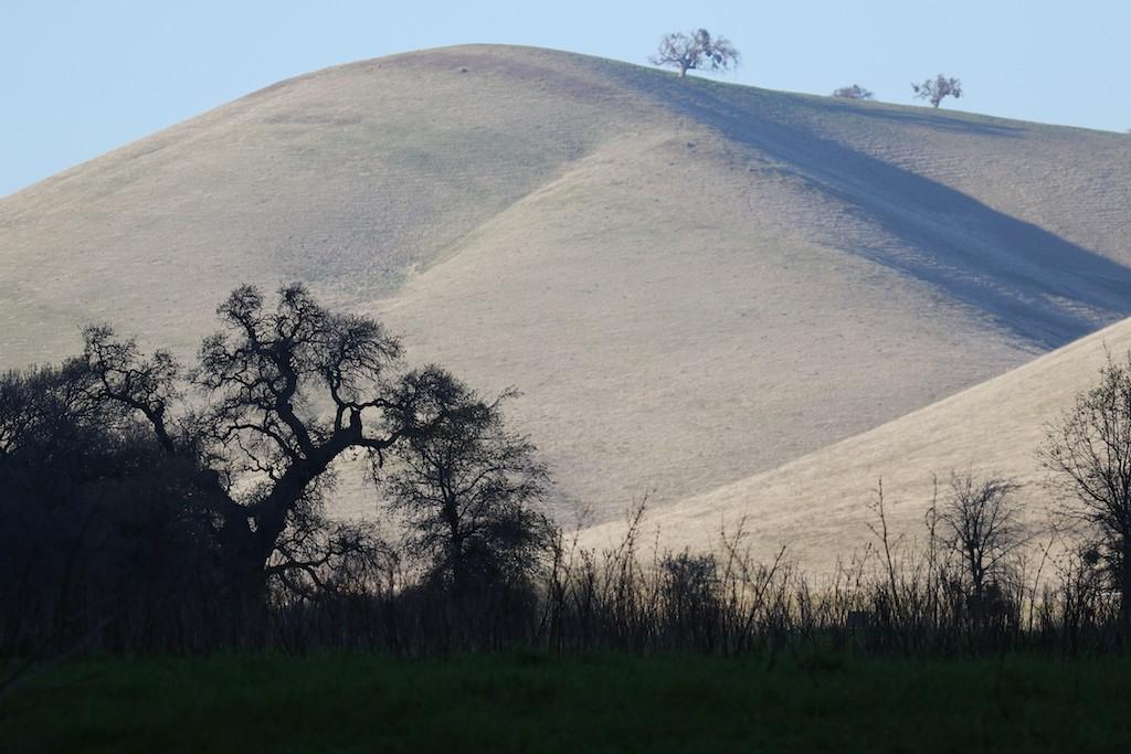 Los Vaqueros hike Dec29  051