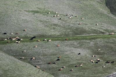 Los Vaqueros hikes Dec17  008