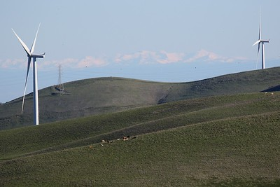 Los Vaqueros hikes Dec17  005
