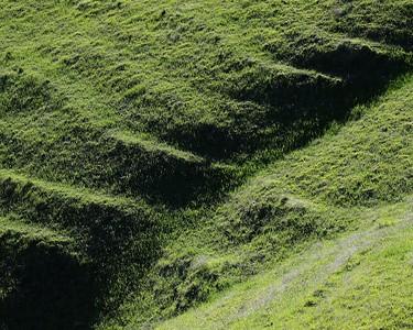Los Vaqueros hikes Dec17  020