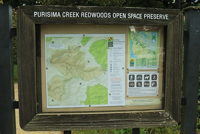 Purisima Creek Redwoods hike May 22nd, 2016