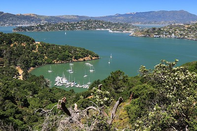 Angel Island June18  11